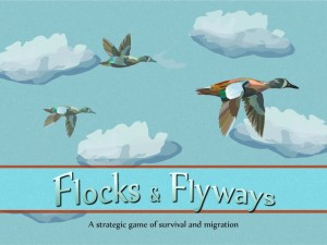 Flocks and Flyways