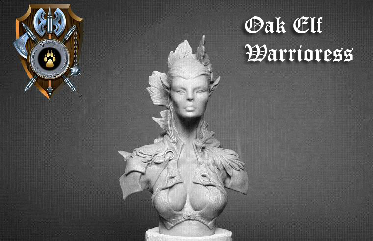 Oak_Elf_Warrioress_Bust_front_view_by_Shieldwolf_Miniatures